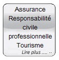 Glass button gris Assurance Resp civ prof tourisme
